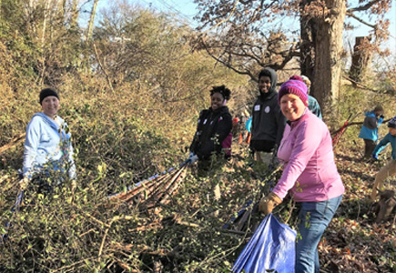 Interns and youth volunteers clear brush
